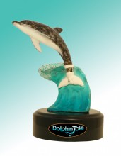 Winter Surf- Dolphin Tale Movie